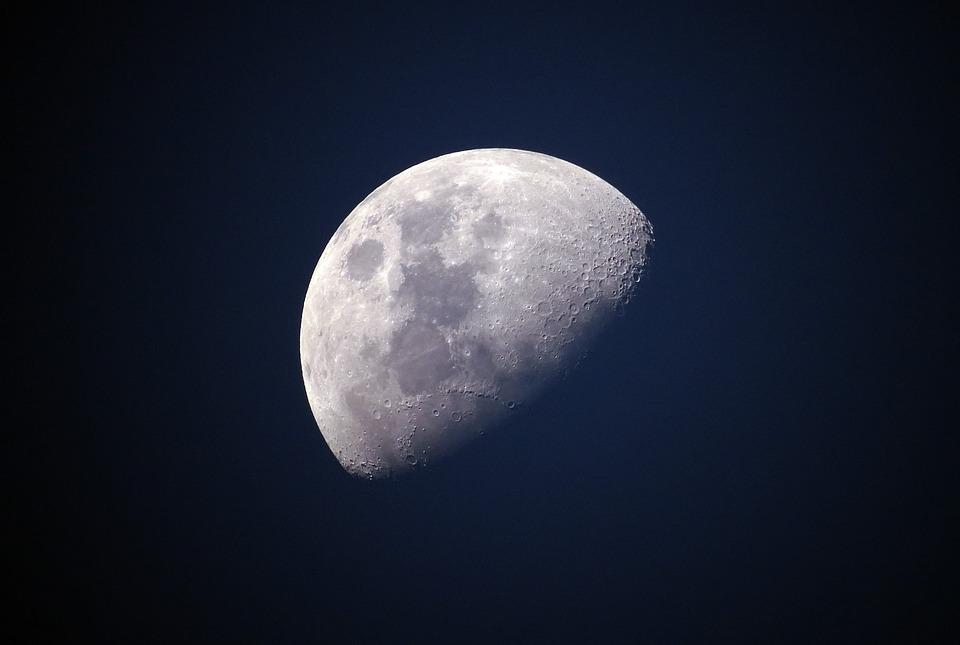 Luna, primo germoglio sulla superficie. La Cina esulta