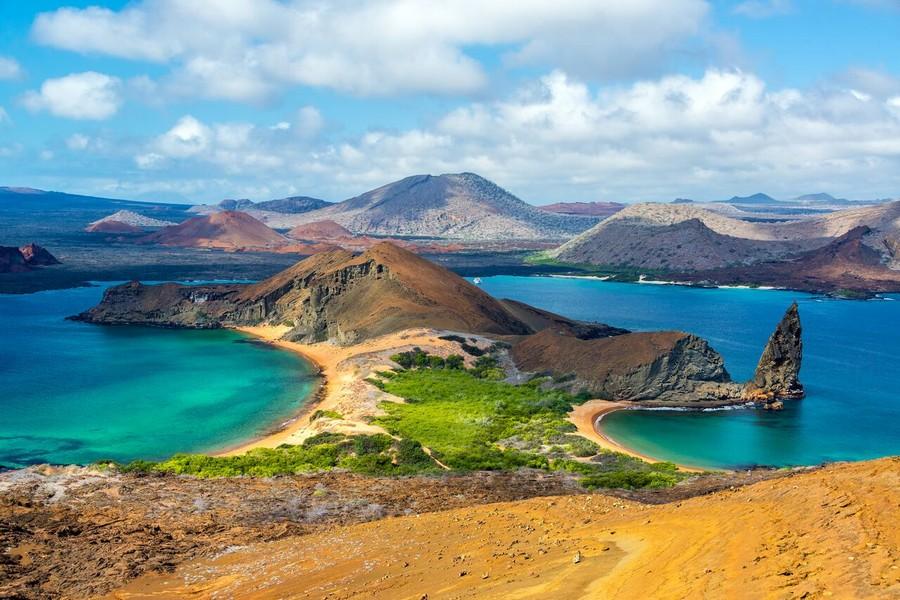Galapagos iguane dopo 200 anni di assenza