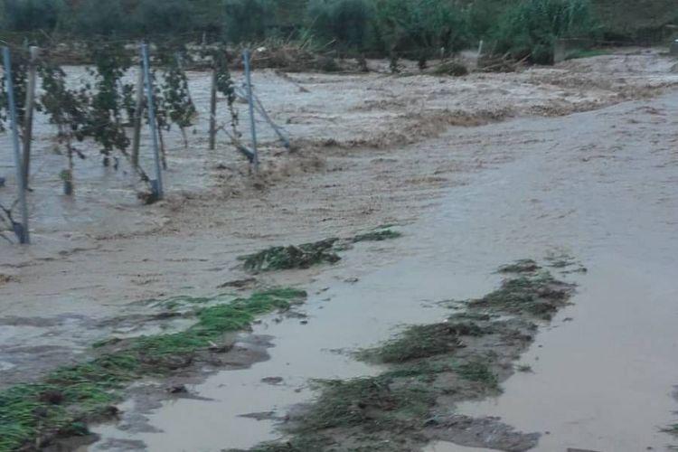 Maltempo: il Reno rompe gli argini. Feriti e disagi