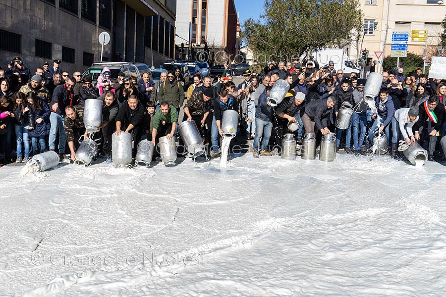 Caos Latte, pastori oggi da Salvini
