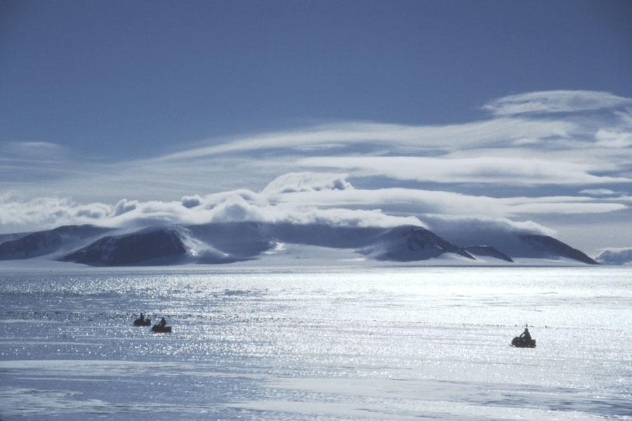 Rinvenuti in Antartide resti di animali microscopici