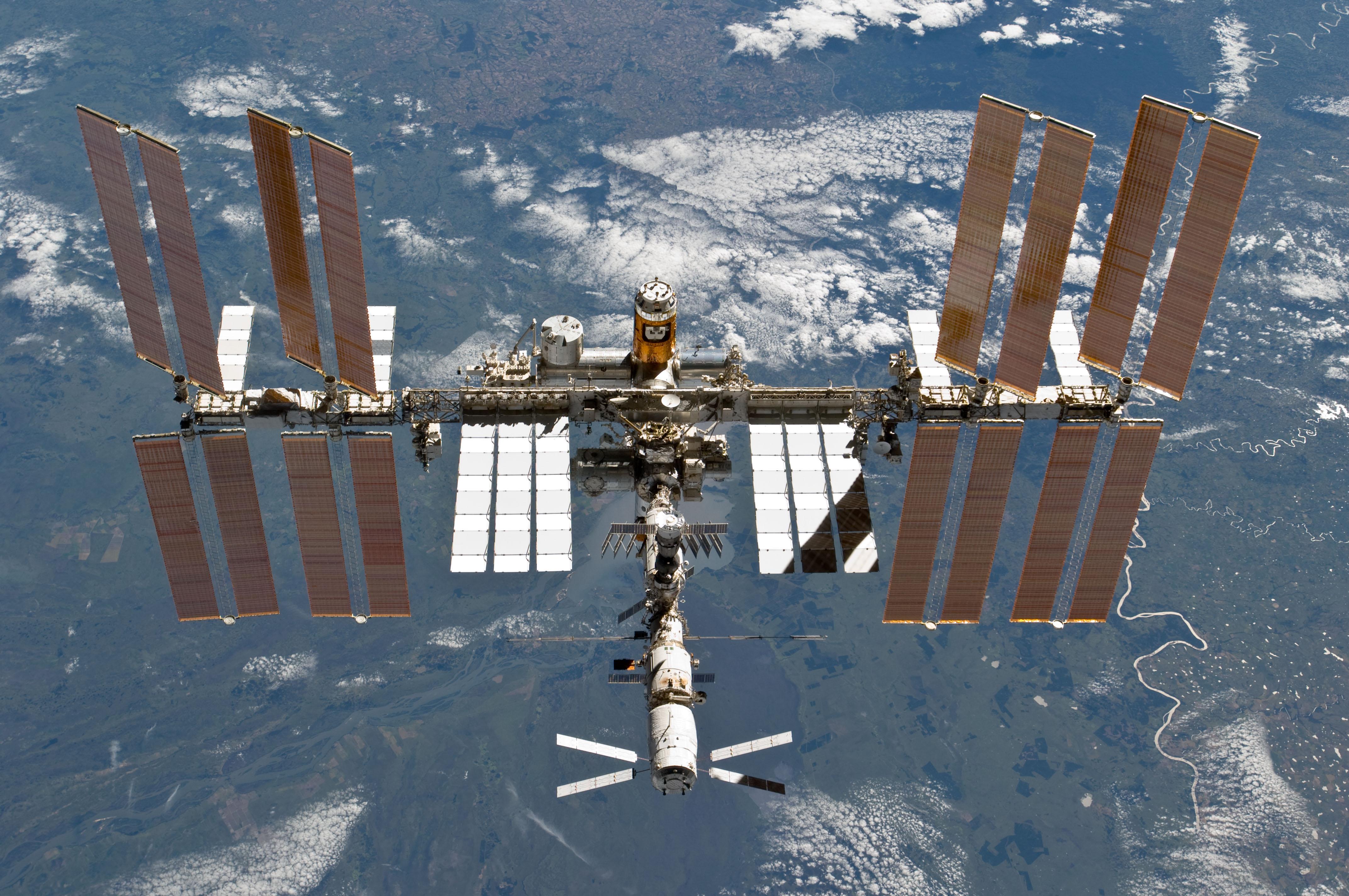 Insetti alieni attaccano la Stazione Spaziale Internazionale