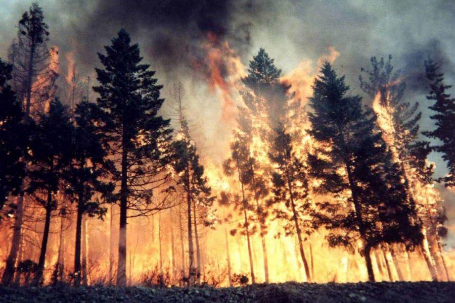 Como, incendio provocato dal barbecue: 13 milioni di multa
