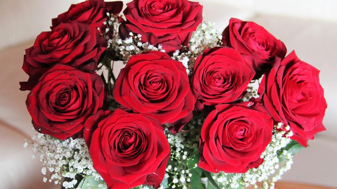 Fiori San Valentino.San Valentino Quali Fiori Regalare Per Dire Ti Amo Al Partner E